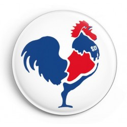 BADGE COQ TRICOLORE